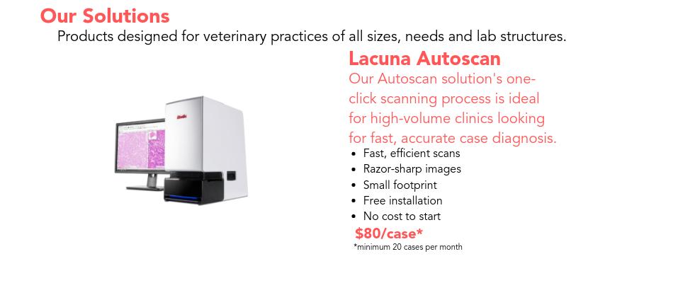 Lacuna Diagnostics_text2